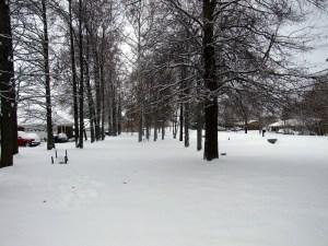 20110109_034