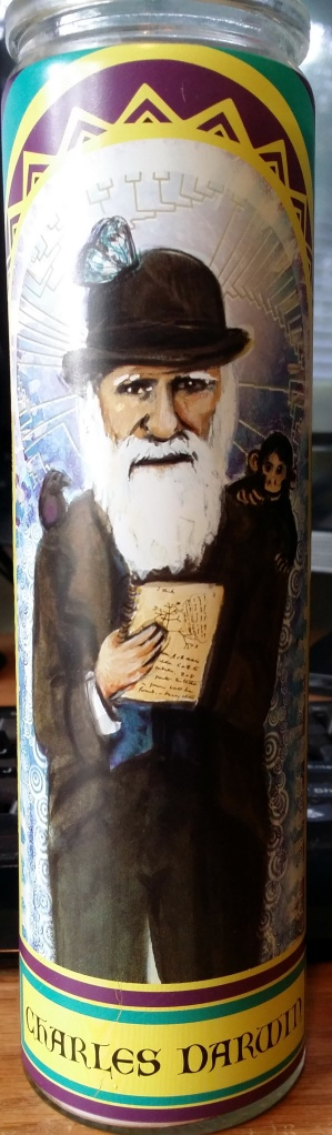 Finally! A Saint Candle I can fully endorse! Thanks to the Smoking Caterpillar on 6th St. #Austin #CharlesDarwin